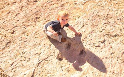 Copper Ridge Dinosaur Tracksite, Green River, Ut
