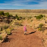 Copper Ridge Dinosaur Tracksite Trail