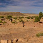Copper Ridge Dinosaur Tracksite