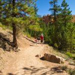 Bryce Canyon Queens Garden- Navajo Connector Trail