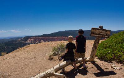Bristlecone Loop, Rainbow and Yovimpa Point, Bryce Canyon National Park, Ut