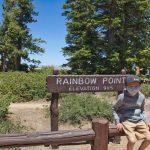 rainbowpoint