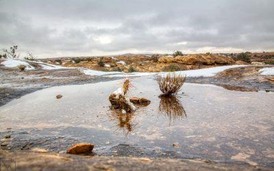 Pothole Point, Canyonlands National Park, Ut
